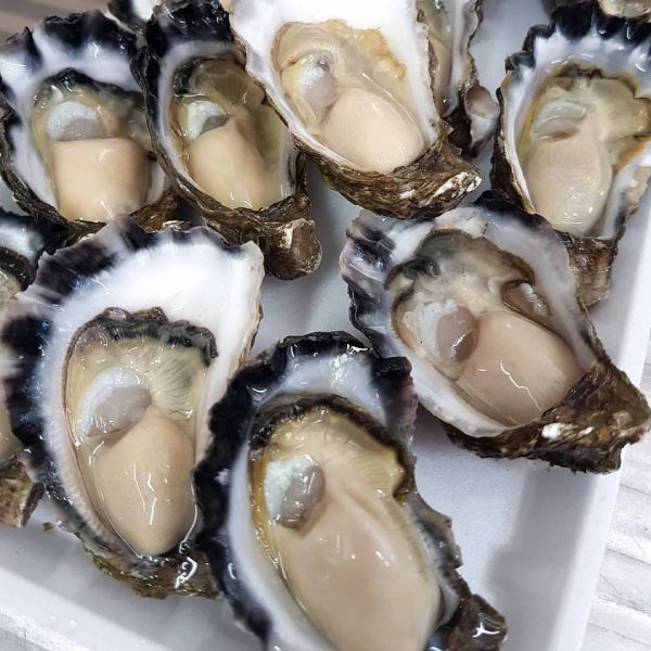 Sydney Rock Oysters Jim Wild's Oyster