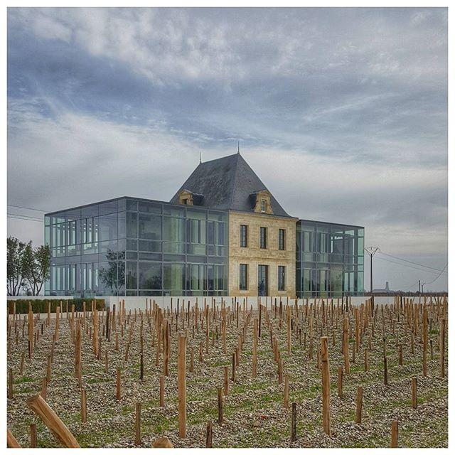 Château  Pédesclaux - Pauillac