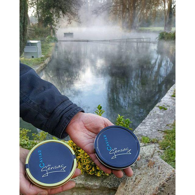 Caviar de la pisciculture du moulin - Gensac La Pallue - Charente