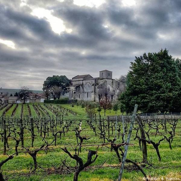 Bouteville - Charente