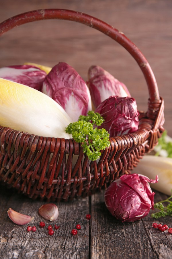 Endives (c) Margouillat Photo shutterstock