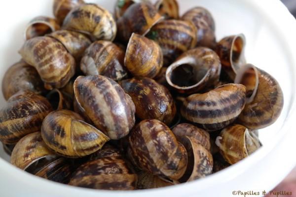 Escargots après le passage au court bouillon