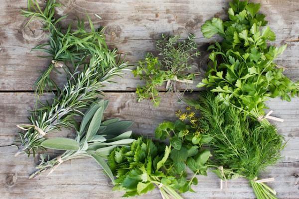 Herbes fraiches (c) Dejan Stanic Micko shutterstock