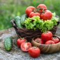 Légumes d'été (c) Juta shutterstock