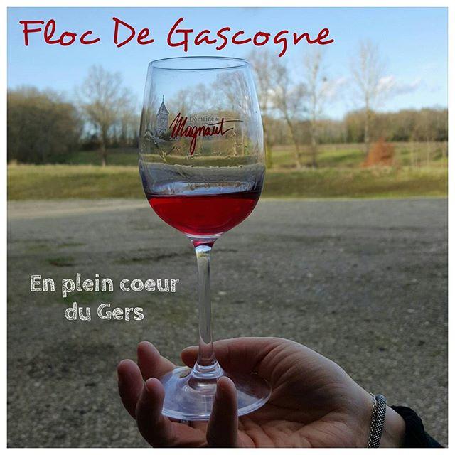 Les plaisirs du Gers ! Domaine de Magnaut