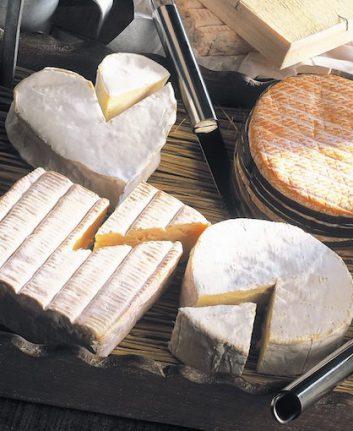 Fromages AOP de Normandie