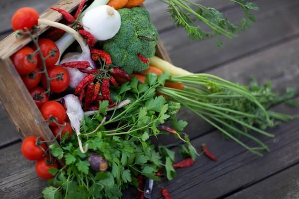 Légumes (c) Elena Barstad shutterstock