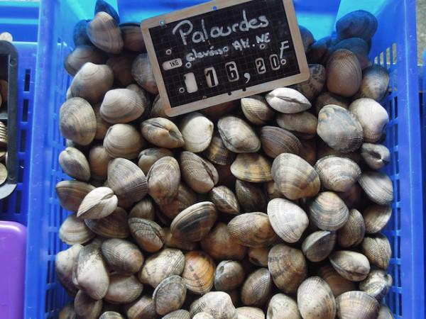 Palourdes (c) Gigile CC BY 2.0