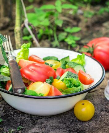 Fresh,Vegetables,In,Garden