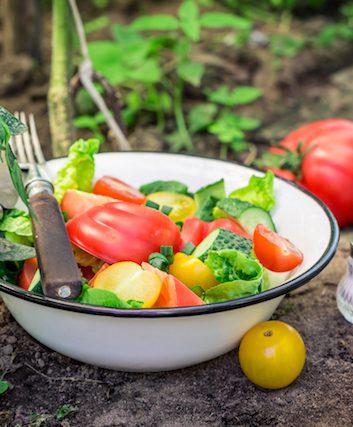 Végétarien (c) Shaiith shutterstock