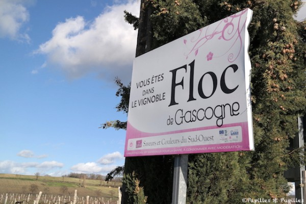 Vignoble - Floc de Gascogne
