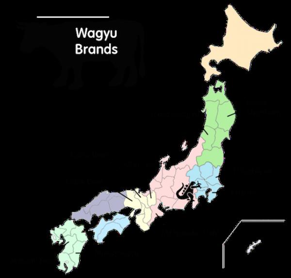 DIfférents wagyu