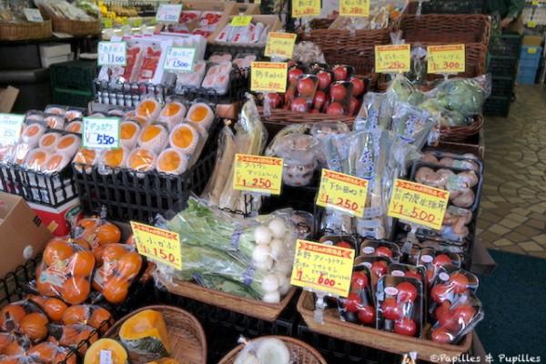 Légumes sous plastiques