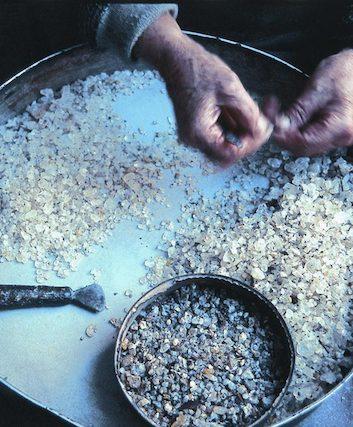 Mastic de Chios (c) gummastic