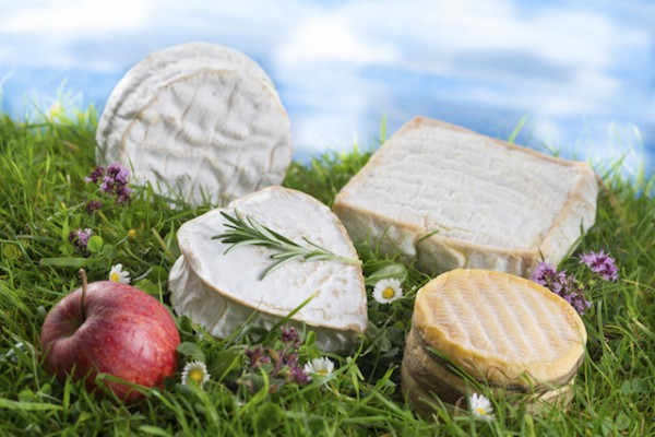 Fromages (c) JPC Prod - Shutterstock