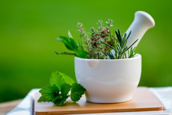 Herbes aromatiques shutterstock