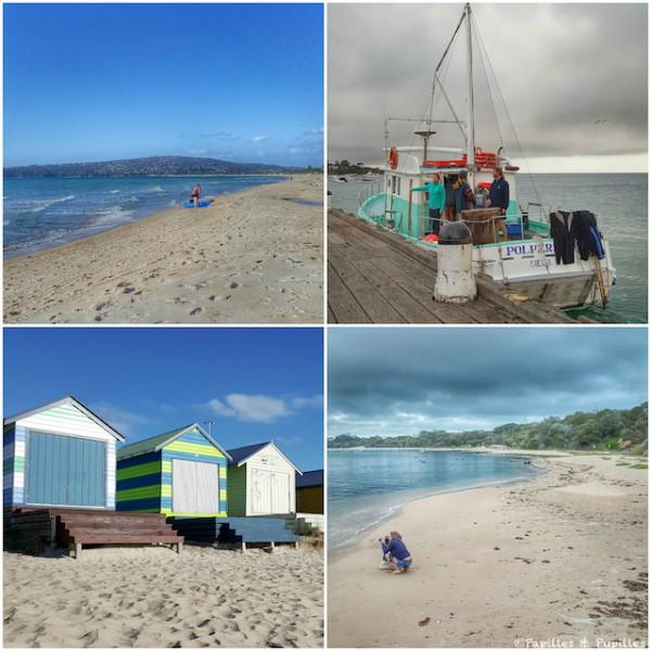 Mornington Peninsula - Dream in Blue