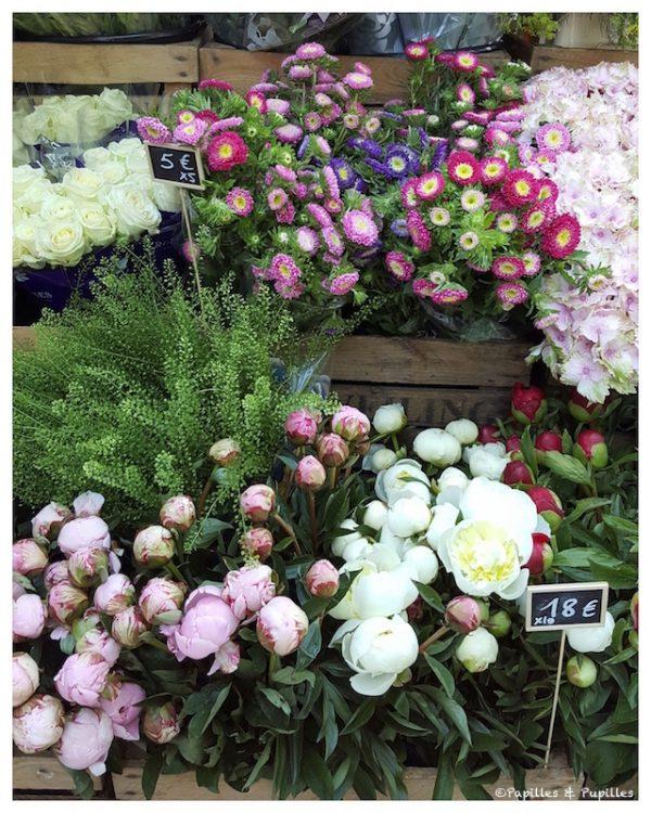 Fleurs - France Fleurs