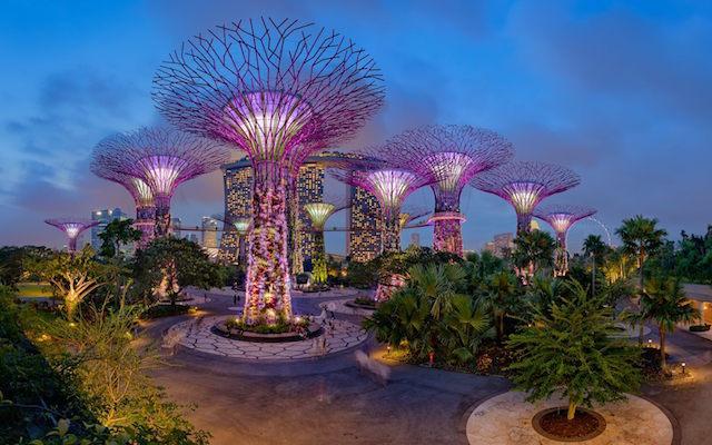 Gardens by the bay ©Gardens by the bay