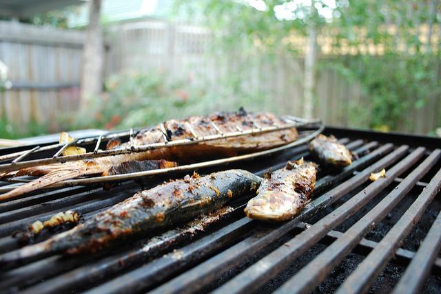 Sardines au bbq (c) Alpha CC BY-SA 2.0