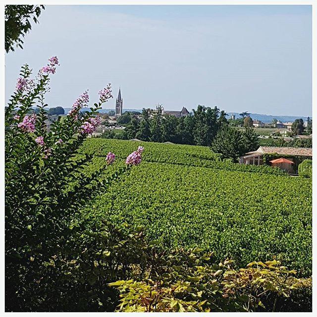 Vue sur le magnifique village de Saint Emilion depuis @Chateautroplongmondot