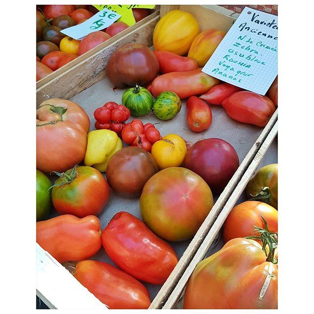 Les dernières tomatesde la saison - marché de Brive la Gaillarde