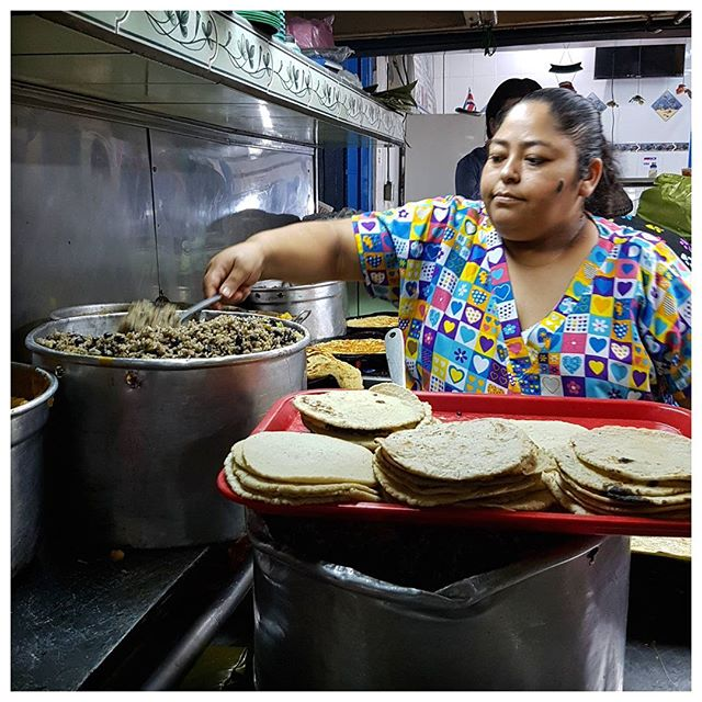 Spécialités du Costa Rica : Gallo pinto (riz et haricot noirs) and tortilla de mais et oeuf