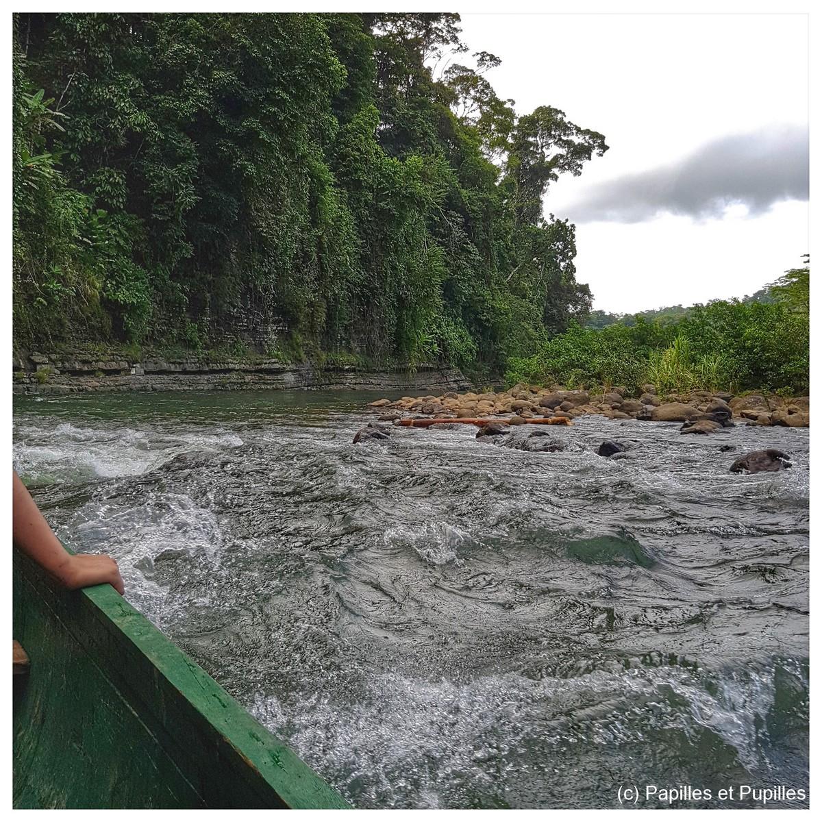 Teleri river - Costa Rica