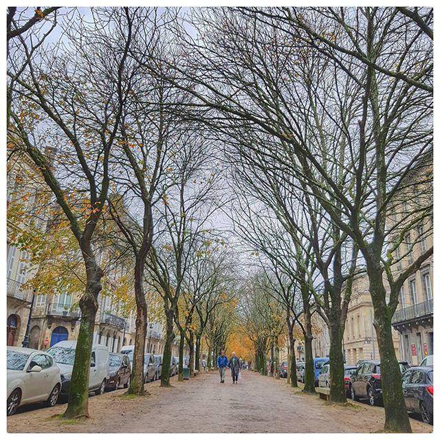 Cours Arnozan, Bordeaux