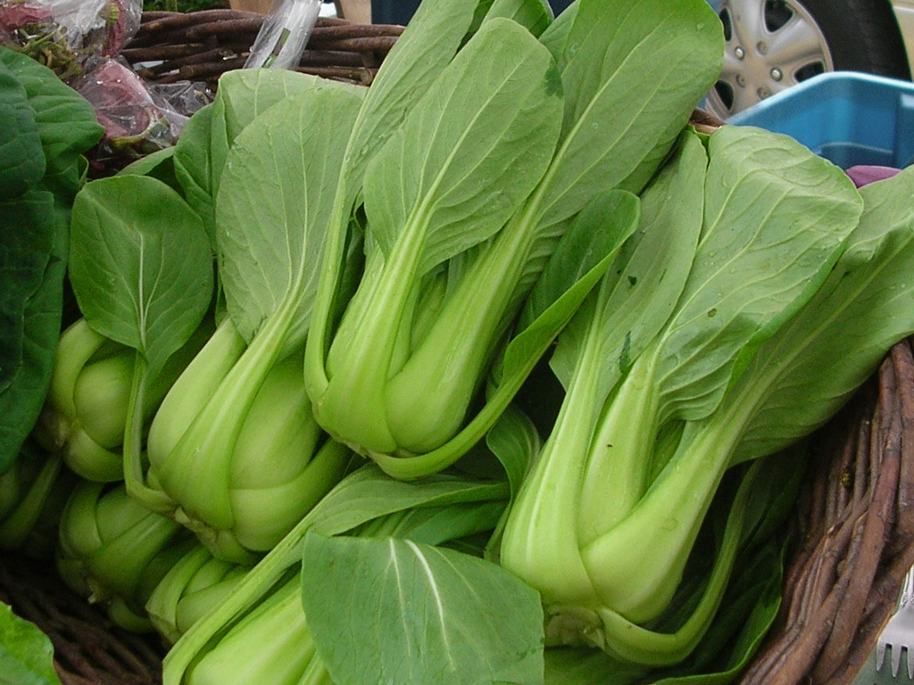 Bok choy (c) shoutsfromheabyss CC BY 2.0