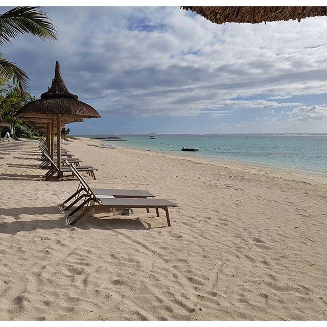 Coucou les lève-tôts - j'espère que vous n'avez pas été touchés par les orages :/ ; ici sur l'île Maurice la journée commence bien ☀ bises à tous ❤