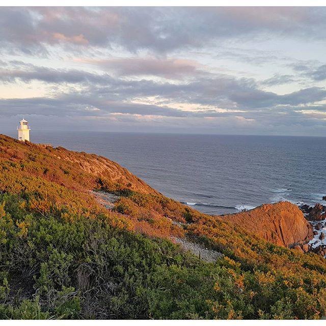 Cape Liptrap- Wilsons Promontory - Australie