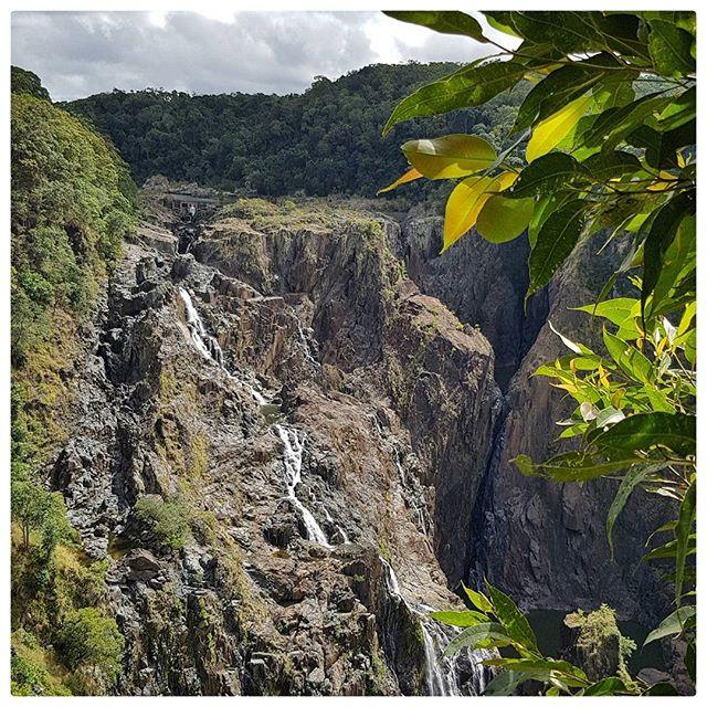 Barron Falls - Queensland