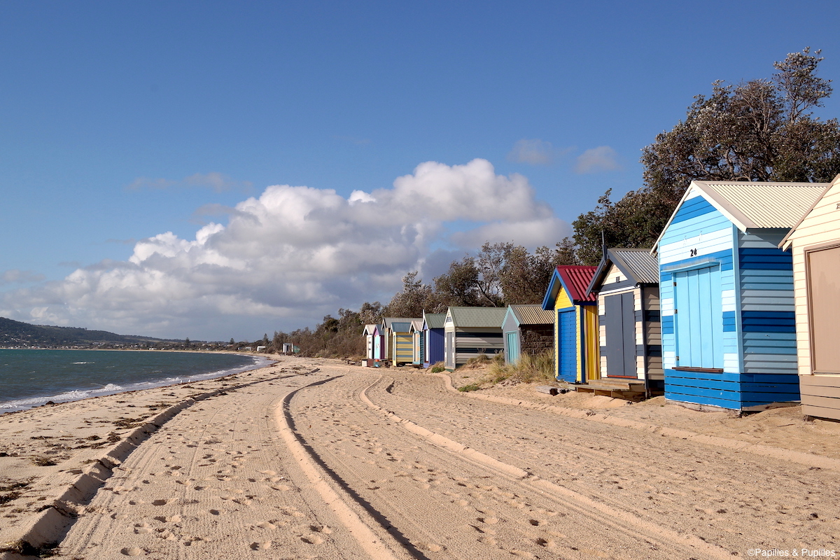Beach boxes - Mornington Peninsula