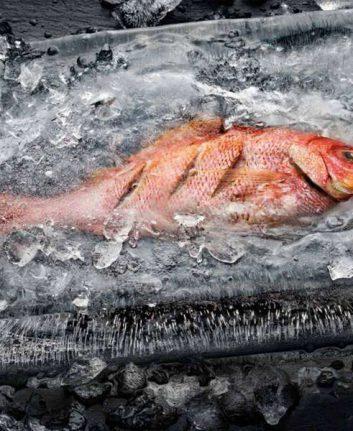 Cuisson du poisson dans la glace