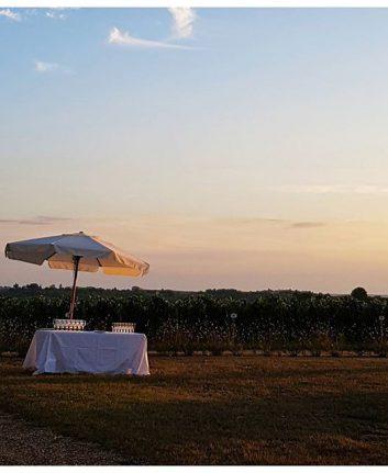 Douceur de vivre dans le vignoble bordelais ❤