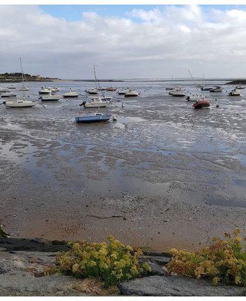 Marée basse - Châtelaillon