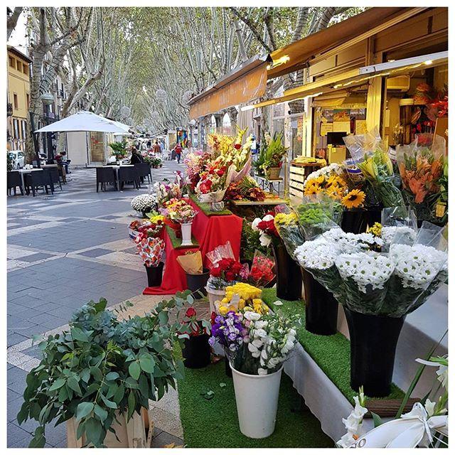 La Rambla des fleurs, Palma de Majorque