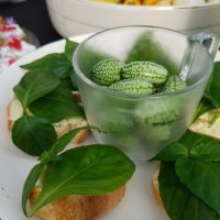 Mico, feuille goût champignon