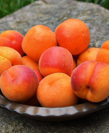 Abricots (c) Roselie CC0 Pixabay