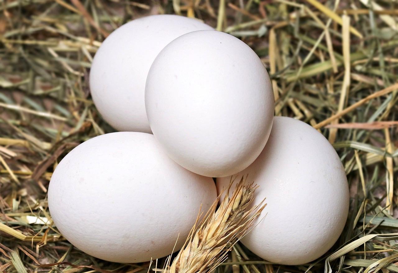 Blanc d'oeuf ©Pixel 2013 CC0 Pixabay