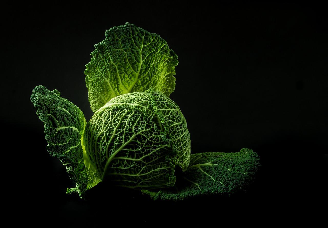 Chou vert (c) Nietjuh CC0 Pixabay