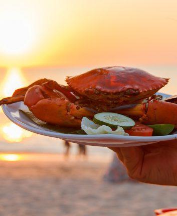 Crabe (c) z0man CC0 pixabay