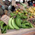 Au marché de Cayenne