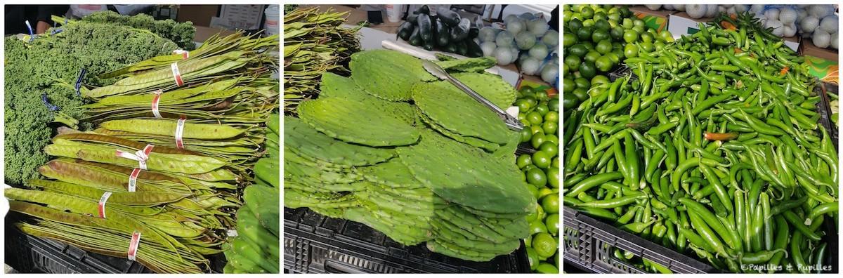 Maxwell Street Market - légumes inconnus, feuilles de cactus et piments