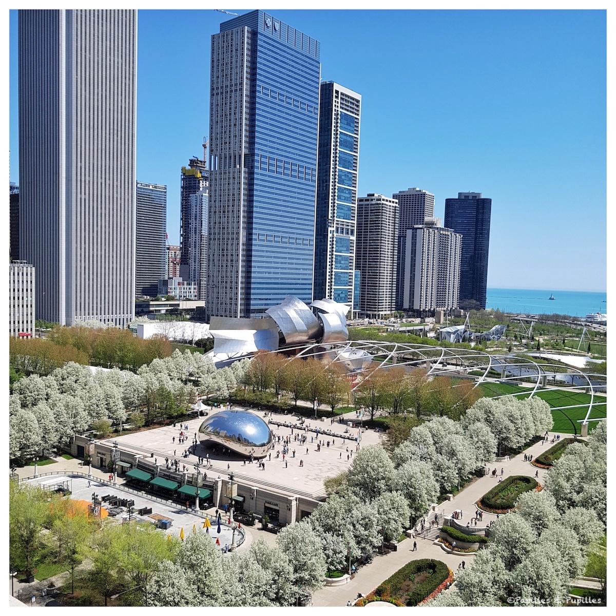 Vue sur The Bean et le Millenium Park depuis Cindy's rooftop