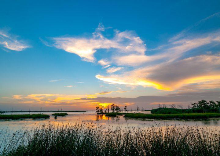 Marais Atchafalya - Louisiane © JB Manning shutterstock