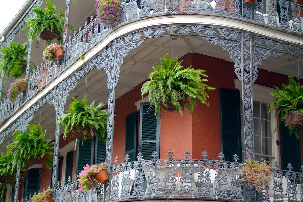 Nouvelle Orleans Vieux Carre Treme Garden District