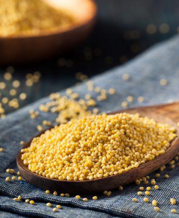 Millet ©Brent Hofacker shutterstock