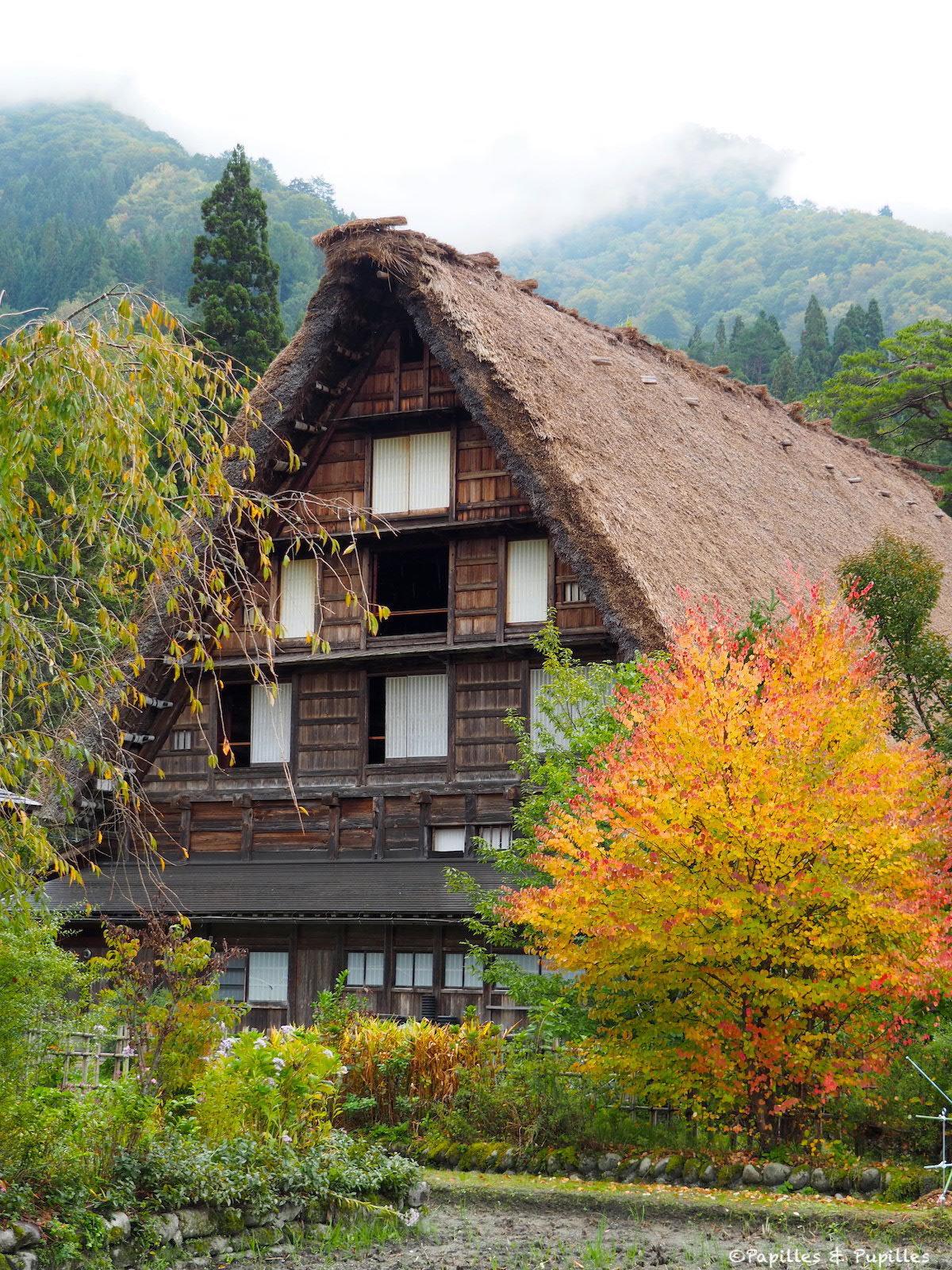 L'automne à Shirakawa